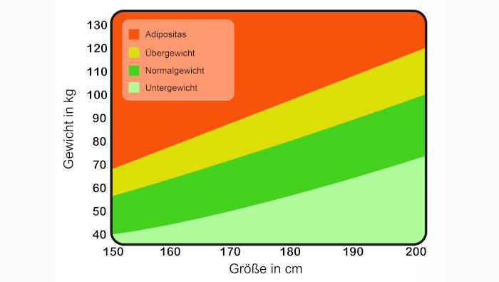 Body mass index: Zusammenhang von Körpergröße und Gewicht